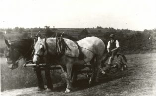 Working on the Land - Haymaking and Harvest