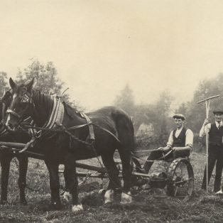 Three men cutting hay with horse drawn mower