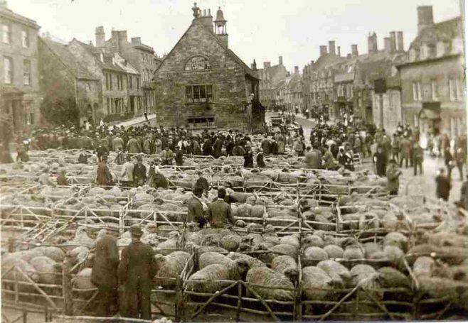 Sheep market in Campden Square