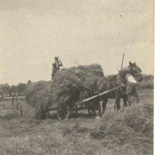 Loading the hay
