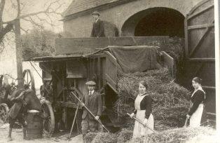 Badger family threshing wheat