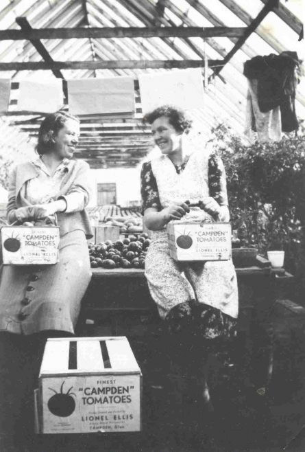 Two women with boxes of tomatoes