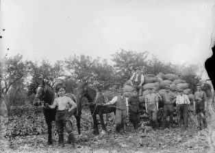 The POWs at work with local farmers | Jesse Taylor