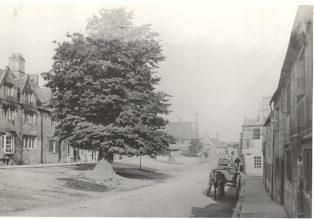 The Elm Tree in Lower High Street