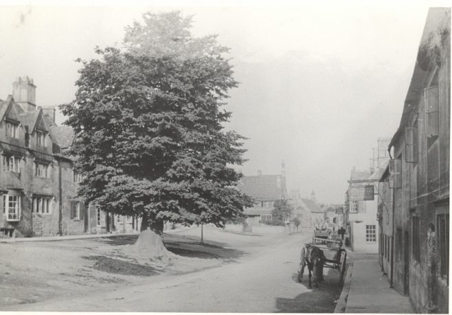 The Elm Tree in Lower High Street