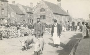 Two men driving pigs in the street