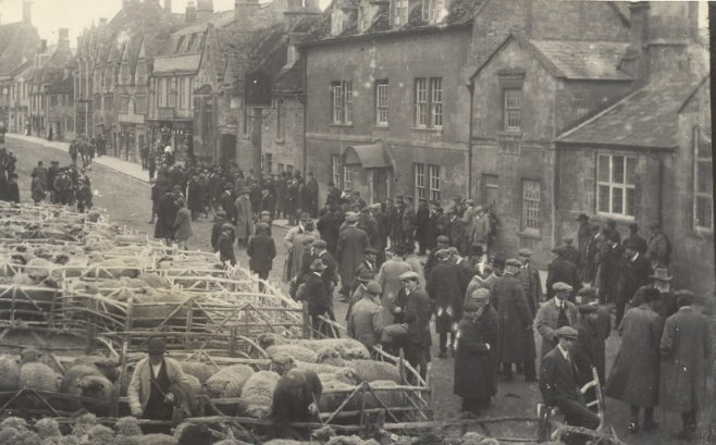 People inspecting sheep in Square