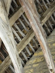 roof timbers showing oak fixing pegs