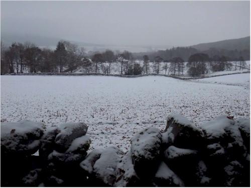 Winter scene across the fields